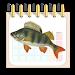 Download Календарь рыбака 4.0.0 APK