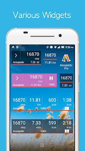 Download Accupedo Pedometer - Step Counter 7.3.7.G APK