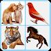 Download Animal Sounds 1.2 APK