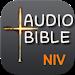 Audio Bible NIV