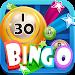 Download Bingo Fever for Facebook 1.07 APK