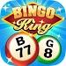 Download Bingo King 1.1 APK