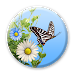 Download Butterfly 1.1.6 APK