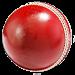 Download Ind vs SL - Cricket Live 1.0.2 APK
