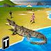 Crocodile Attack 2019