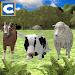 Download Farm Animals Family Survival 1.2 APK