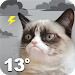 Download Grumpy Cat Weather 4.4 APK