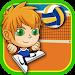 Download Head Volleyball Tournament 3.0 APK