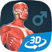 Download Human body (male) educational VR 3D 1.18 APK