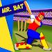 Download Mr. Bat: The Cricket Game 1.0.7 APK
