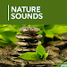 Download 1000 Nature Sleep Relax Sounds 1.4.6 APK