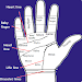 Download Palmistry in English 1.0 APK