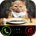 Download Phone call from cat 2.0 APK