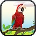 Download Real Talking Parrot 4.4 APK