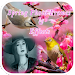 Download Spring Photo Frames 1.00.05 APK
