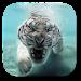 Download Tiger Live Wallpaper 2.8.0 APK