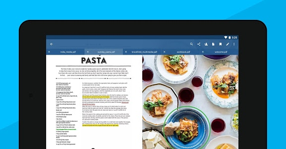 screenshot of Xodo PDF Reader & Editor version 4.5.29